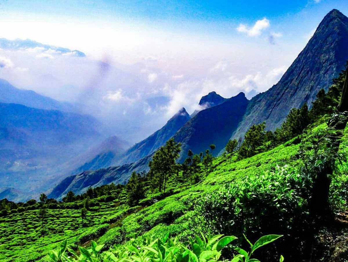 Bangalore with Ooty and Coorg Tour - 5Night/6Days