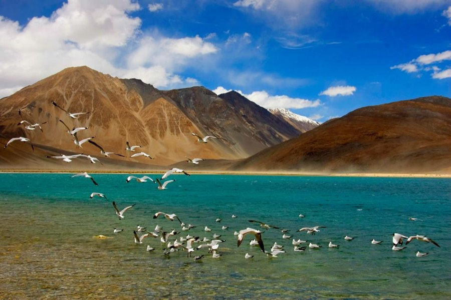 CHARMING LADAKH WITH A VALLEY OF KASHMIR