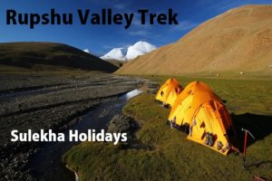 Rupshu Valley Trek