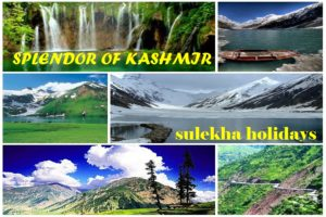 SPLENDOR OF KASHMIR